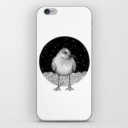 Seagull on a Starry Night iPhone Skin