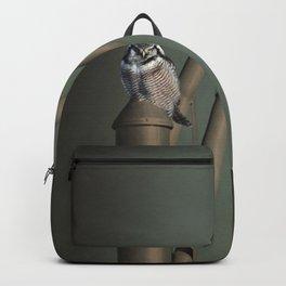 I bring the light Backpack