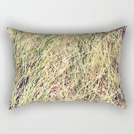 Tillinghast Place 05 Rectangular Pillow