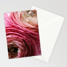 ((O))(((0))(o) Stationery Cards