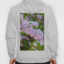 Double Flowering Plum Hoody