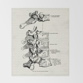 Vintage Anatomy Illustration of the Thoracic vertebrae Throw Blanket