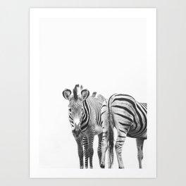 Zebra Duo Art Print