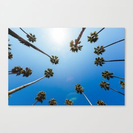 Palm Trees in Los Angeles Canvas Print