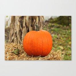 Pumpkin and the leaf Canvas Print
