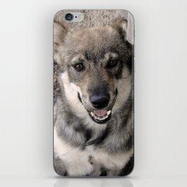 Dog-Wolf iPhone Skin