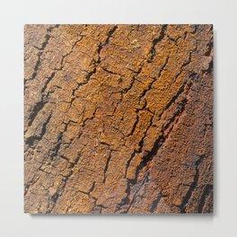 Orange tree bark with rustic wrinkles Metal Print