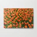 Tulips by incongruency