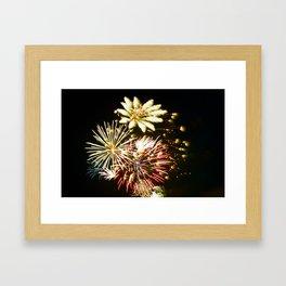 Canadian Fireworks Framed Art Print