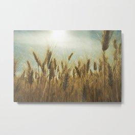Near Harvest Metal Print