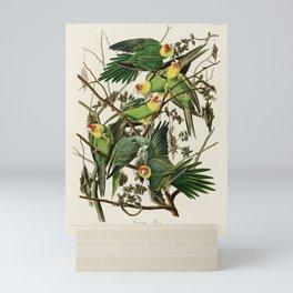 Carolina Parrot - John James Audubon's Birds of America Print Mini Art Print