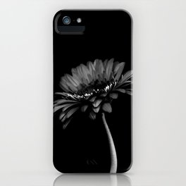 Daisy gerbera. Black and white iPhone Case