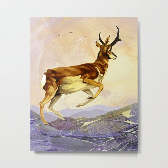 Pronghorn in the Morning Metal Print