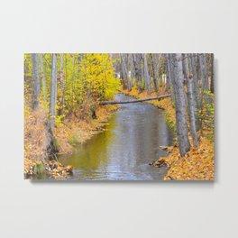 Autumn Stream II Metal Print