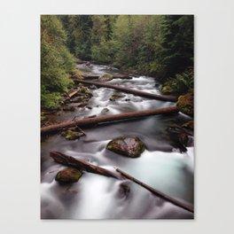 Umpqua River | Oregon Canvas Print