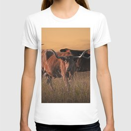 Texas Longhorn Steers on the Prairie at Sunset T-shirt