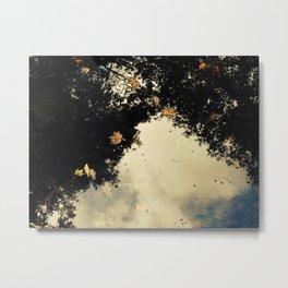 Reflecting leaves Metal Print