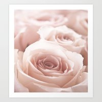 roses Art Prints featuring Roses  by Bree Madden