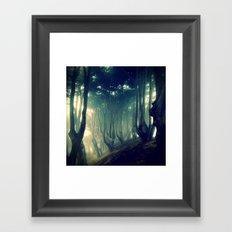 Print #9 Framed Art Print