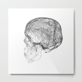 skull trails black Metal Print