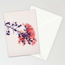 Holy Crape Myrtle! Stationery Cards
