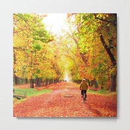 My autumn symphony Metal Print