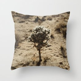 Cholla Cactus in Joshua Tree National Park Throw Pillow