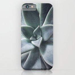 A Succulent Life iPhone Case
