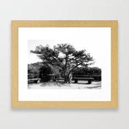 Halt Framed Art Print