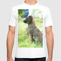 Cute Malinoi shepherd 8 weeks old White Mens Fitted Tee MEDIUM