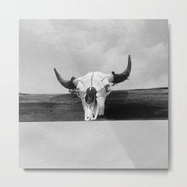 Bull Head Black and White Metal Print