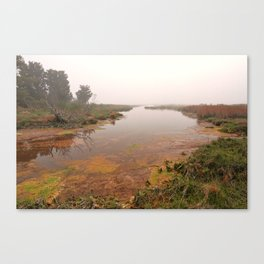Misty Assateague Island Marsh Canvas Print