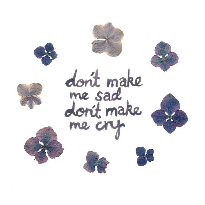 Don't Make Me Sad, Don't Make Me Cry (Lana) Comforters