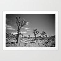 Desert Landscape 2 Art Print