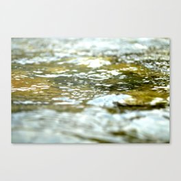 The Yuba River Canvas Print