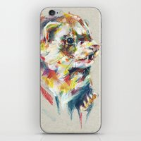 ferret iPhone & iPod Skins featuring Ferret V by Anaïs Chesnoy