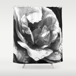 Morning Rose - greyscale version Shower Curtain