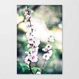 Ladylike Canvas Print