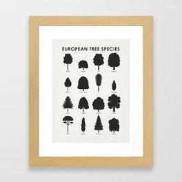 European Tree Species Framed Art Print