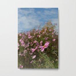 Pitville Meadow Metal Print