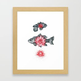 Blooming in the pond Framed Art Print