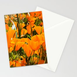 A Field of the California Poppy Stationery Cards