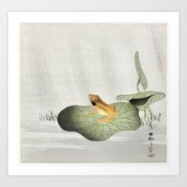 Frog on lotus leaf (1900 - 1930) by Ohara Koson (1877-1945) Art Print
