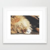 simba Framed Art Prints featuring simba by Leanne Taylor Collection