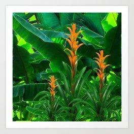 GREEN JUNGLE & TROPICAL CORAL BROMELIAD FLOWERS Art Print
