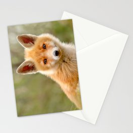 The Face of Innocence .:. Red Fox Kit Stationery Cards