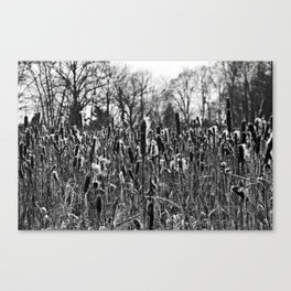 Winter Poetry of the Grasses Canvas Print