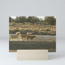 Kicking Up Dust, No. 2 Mini Art Print