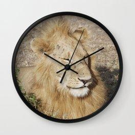 Friendly lion Wall Clock