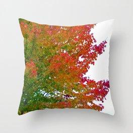 Feuilles d'automne Throw Pillow